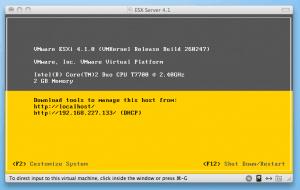 VMware ESXi 4.1