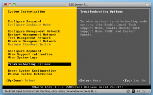 VMware ESXi 4.1 Troubleshooting Options