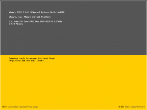 VMware ESXi 5.0 enable SSH