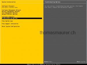 VMware ESXi 5.1 Settings