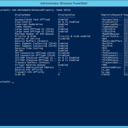 PowerShell NetAdpater Advanced Property