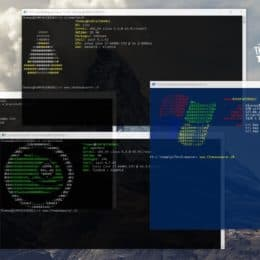 Linux on Windows 10