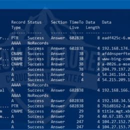 Flush DNS Cache with PowerShell