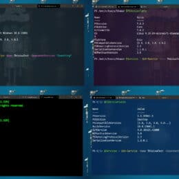 Windows Terminal Color Schemes -Themes